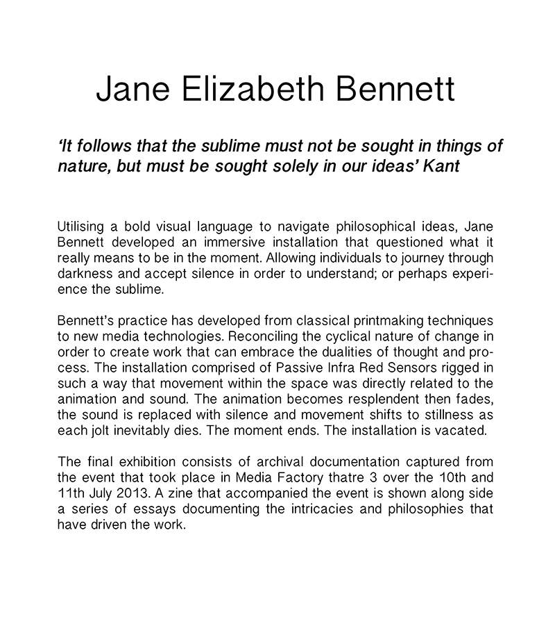 Utilising a bold visual language to navigate complex philosophic ideas Jane Elizabeth Bennett's Sublime Moment immersive installation engages the viewer.