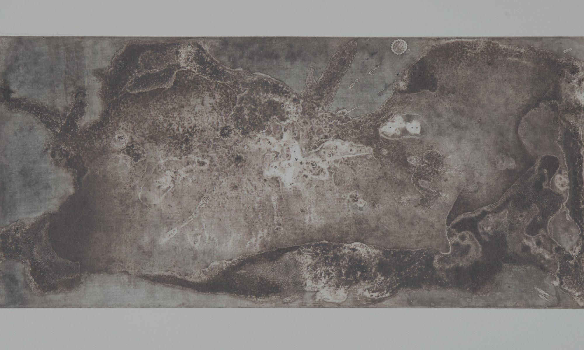 Rhizome One Point Two, Soft Ground Etching on Zinc, 2017, Jane Elizabeth Bennett
